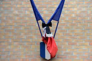 7773448174_la-republique-rend-un-hommage-appuye-lorsqu-elle-met-ses-drapeaux-en-berne-1